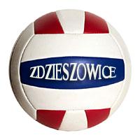 volleyball_ball kopia kopia.jpeg